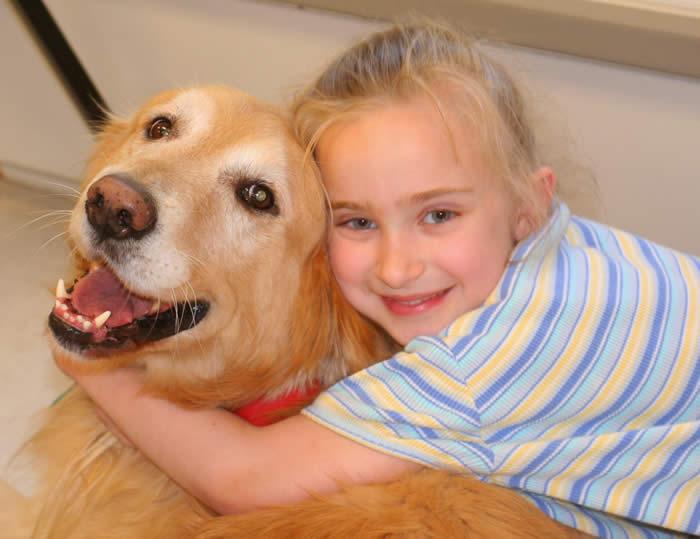 cães terapeutas patas therapeutas