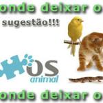 hotel para cães cão cachorros pet sitter petsitter babá animais cuidador