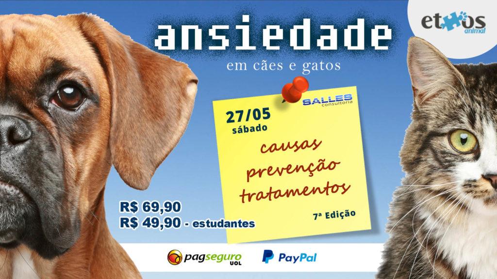 Palestra-Ansiedade-Cães-Gatos-Animais-7-edição-Ethos-Animal-Salles-Consultoria-Cursos-1024x576