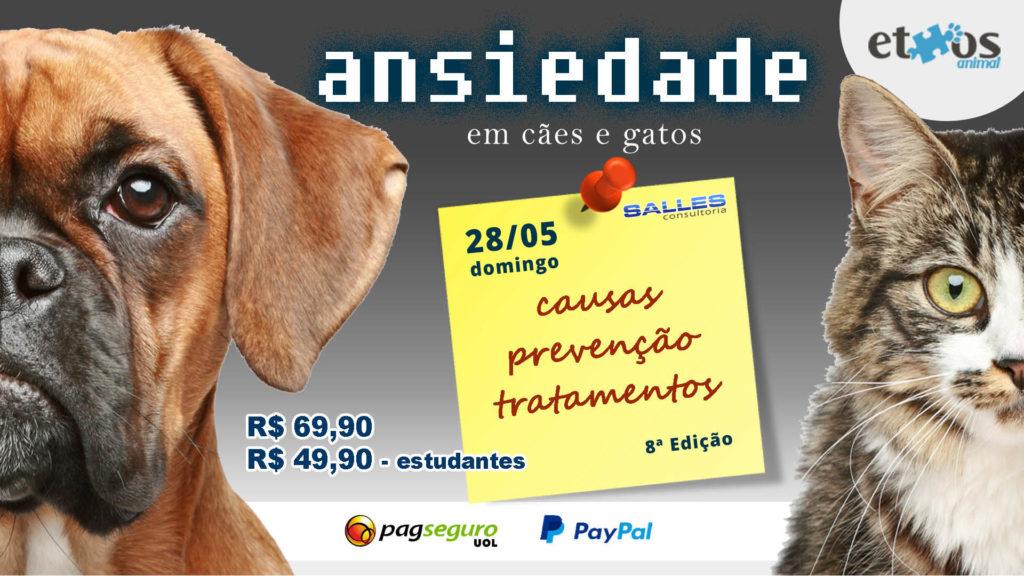 Palestra-Ansiedade-Cães-Gatos-Animais-7-edição-Ethos-Animal-Salles-Consultoria-Cursos-2-1024x576